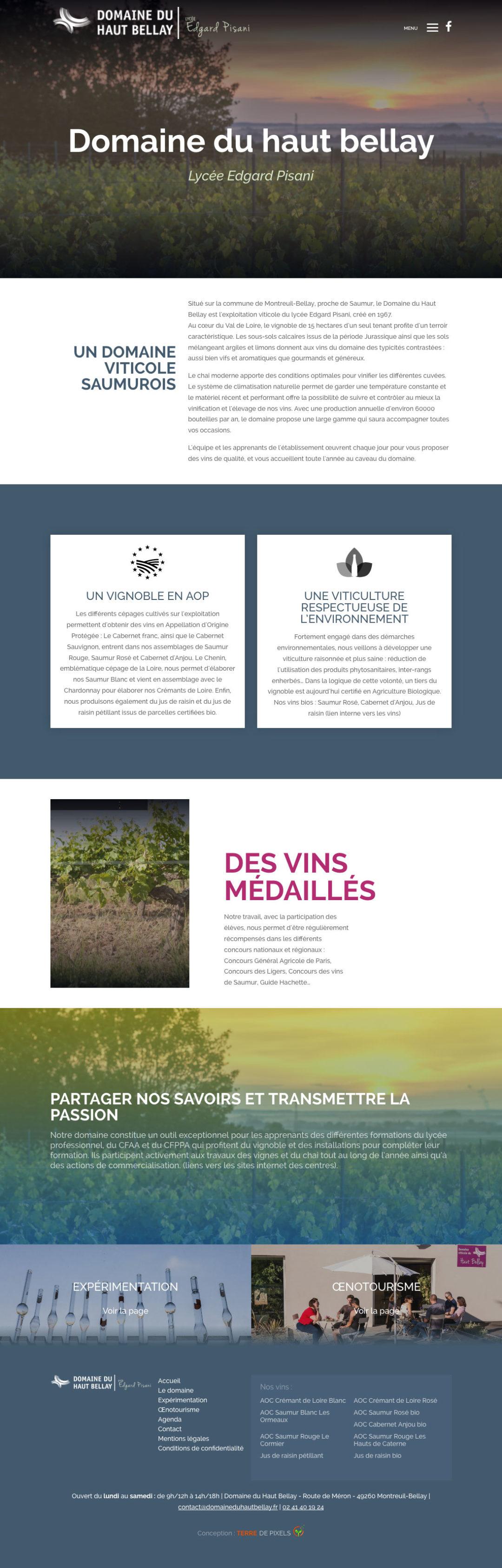 creation site internet domaine Haut-Bellay- vin Saumur Anjou